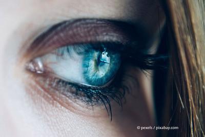 © Pexels / pixabay.com